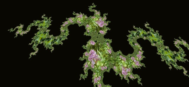 wild orchid image manipulated to look like abstract chinese dragon