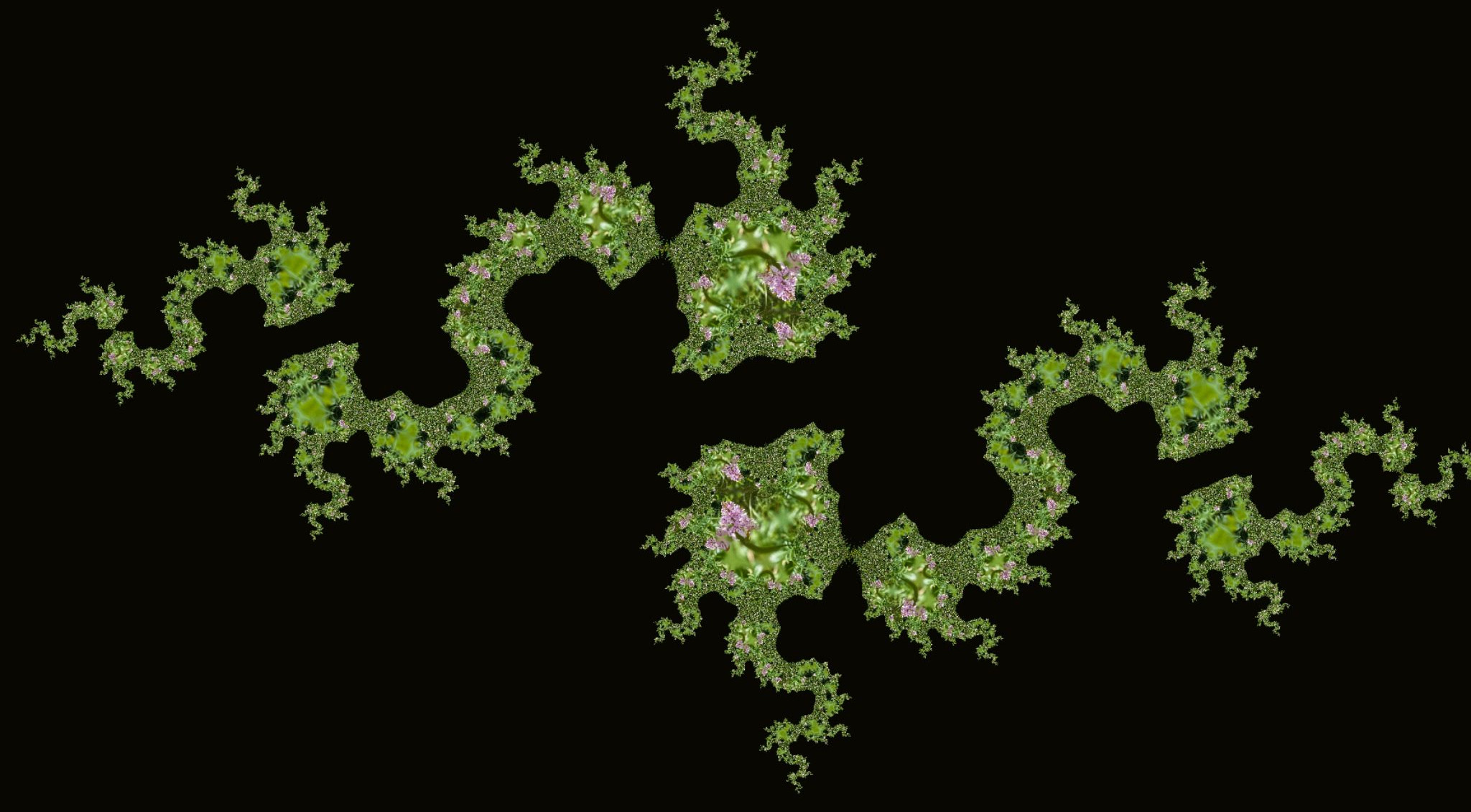 Wild Orchid photo manipulated to look like dotted about Islands