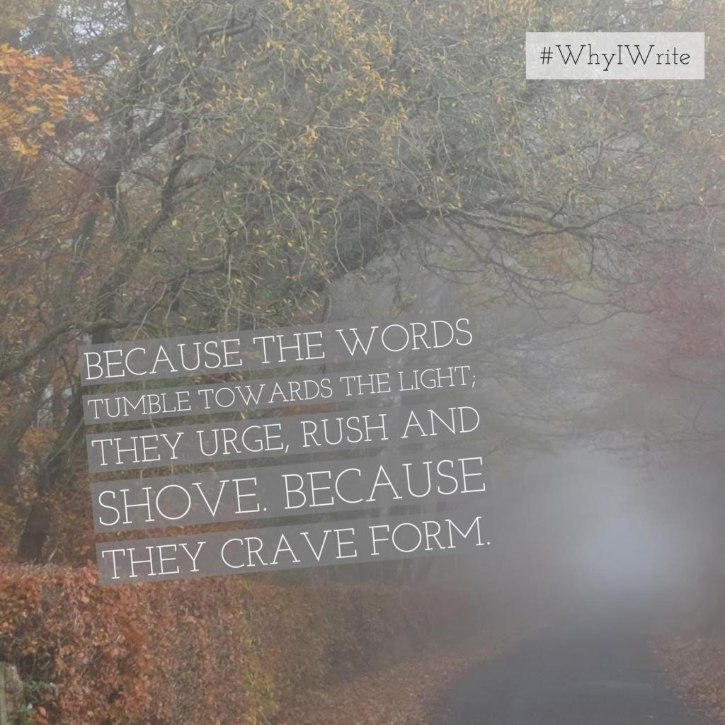 Image of foggy autumn woods with text overlay. The text is repeated in the image caption