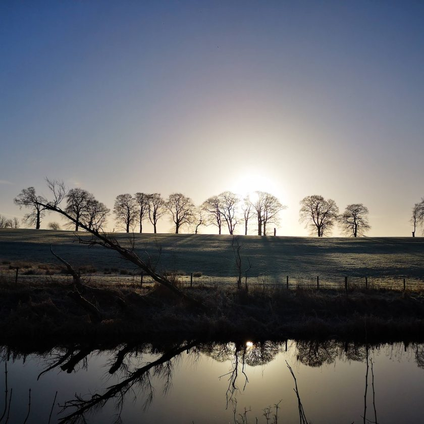 Winterscene bare trees reflecting in a river backlid by morning sun