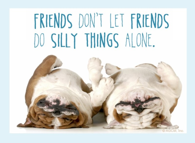 Image of two bulldogs sleeping on their backs looks as if they are holding paws and the writing says friends don't let friends do silly things alone